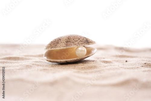 Fotografia Sea shell with pearl on a sandy beach