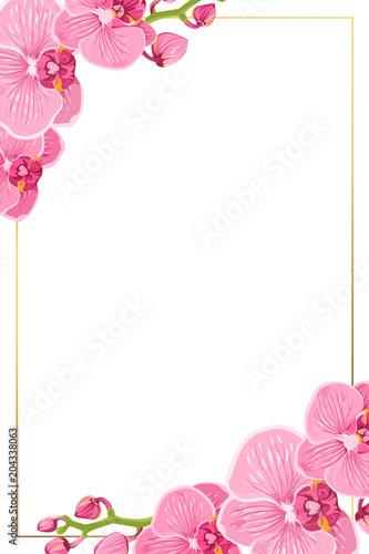 Fotografie, Obraz  Pink purple bright exotic orchid phalaenopsis flowers