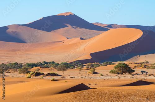 Parkplatz in der Namib bei Deadvlei und Sossusvlei, Sesriem, Namibia Wallpaper Mural