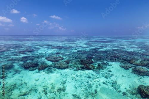 Ocean Indyjski z rafami koralowymi