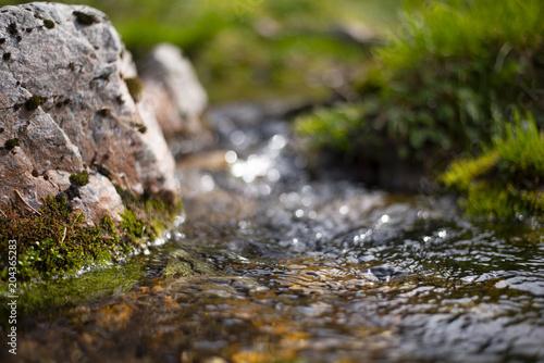 Printed kitchen splashbacks Forest river Waterfall
