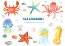 Watercolor Set Of Sea Creature...