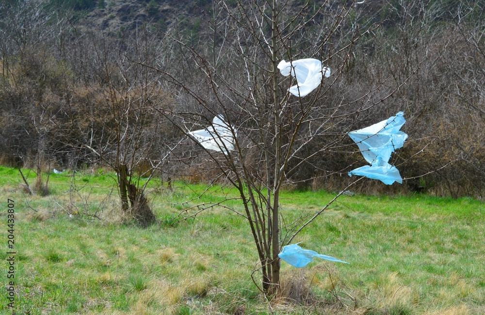tree and plastic bags