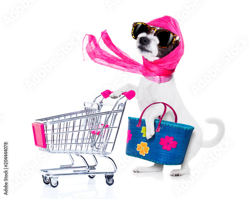 Foto op Canvas Crazy dog shopping dog diva