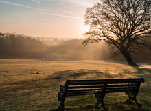 Misty Sunrise Bench