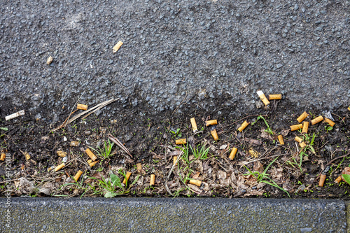 Fotografia, Obraz cigarette butts on the street close to the pavement