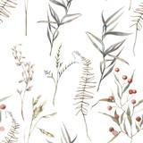 Akwarela suchych ziół wzór. Ręcznie malowane tekstury z elementami botanicznymi: rośliny, trawa, jagody, paproć, liście. Naturalne powtarzające się tło - 204485293