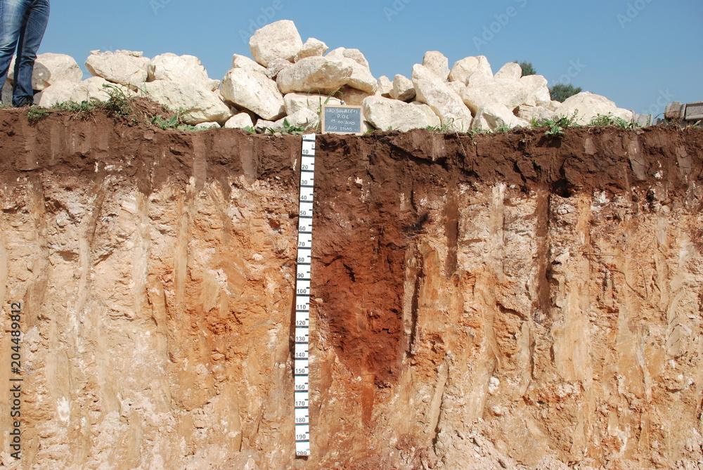 Fototapety, obrazy: Profilo del suolo
