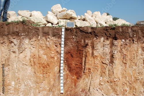 Fotografie, Obraz  Profilo del suolo