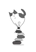 Cat On Wobbly Stone Piles