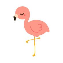 Flamingo Child