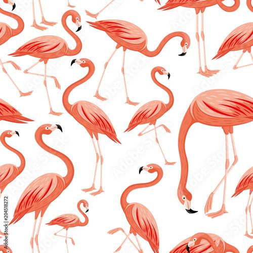 Canvas Prints Flamingo Bird Seamless pattern with pink flamingos on white background.