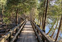 Crawford Lake Boardwalk