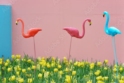 Photo sur Toile Flamingo Plastic garden decorative colorful flamingos in the daffodils and tulips in the flowerbed in the king's flowers garden Keukenhof (Garden of Europe), Holland, The Netherlands