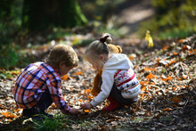Children Pick Acorns From Oak Trees. Brother And Sister Camping In Autumn Forest. Little Boy And Girl Friends Have Fun On Fresh Air. Childhood And Child Friendship. Kids Activity And Active Rest