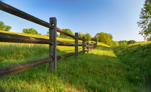 """The Fence"" Americana Series A..."