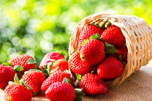 Strawberries In Natural Backgr...
