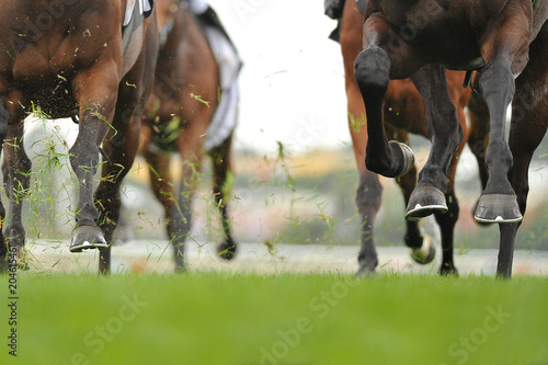 Fotografie, Obraz Horse racing action