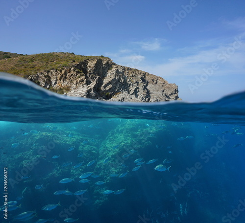 Mediterranean sea rocky coast split view above and below water surface with a shoal of fish underwater, Marine reserve of Cerbere Banyuls, Pyrenees Orientales, France