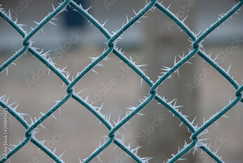 Ice spikes on the mesh - Buy this stock photo and explore similar