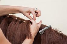 Closeup Of Woman Braid Detail ...
