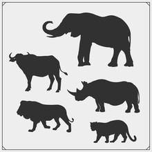 Set Of Big Five Animals Silhou...