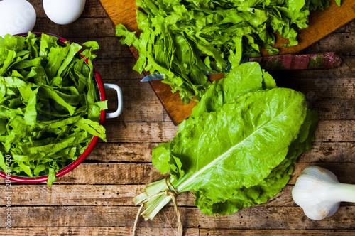 Mangel green cabbage vegetable close up Canvas Print