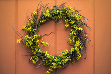 A Yellow Forsythia Wreath Hang...