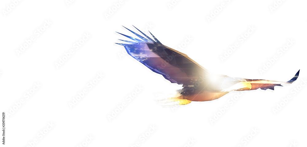 Abstract hawk
