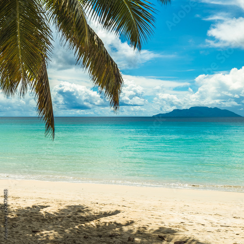 Staande foto Strand Tropical island beach. Perfect vacation background.