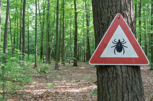 tick insect warning sign in forest #204717010