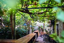 A Street Cafe With A Terrace And A Wattle Grapevine. Wooden Bar Counter