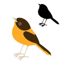 Bird  Robin  Vector Illustration Flat Style  Silhouette