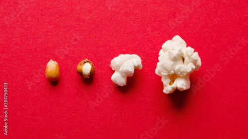 Fotografia  Stages of preparation of corn kernels on red table, top view