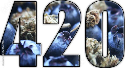 Marijuana 420 Logo With Blueberries & Bud Canvas Print