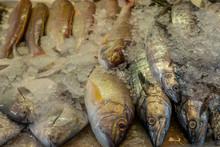Heap Of Colorful Fresh Fish At...