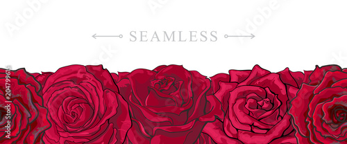 Montage in der Fensternische Künstlich Red roses border seamless pattern with romantic hand drawn flower blooms isolated on white background. Beautiful floral vector illustration with rose blossom in sketch style.