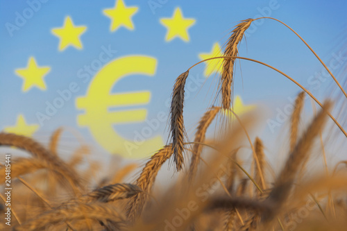 Fotomural  Agrarsubventionen