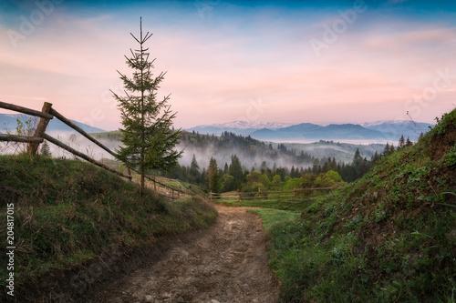 Foto auf Gartenposter Gebirge Road in a mountains