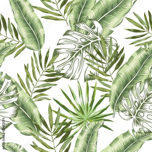 Tapety Kwiaty zielony-banan-liscie-palmowe-monstera-z-bialym
