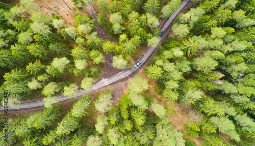 Tuinposter Luchtfoto Road throught forest