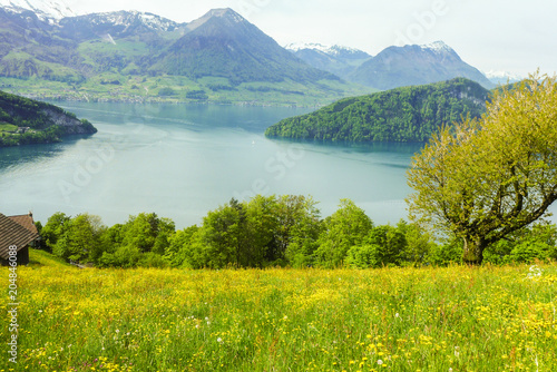 Poster Bergen flower field on the lake with mountain background