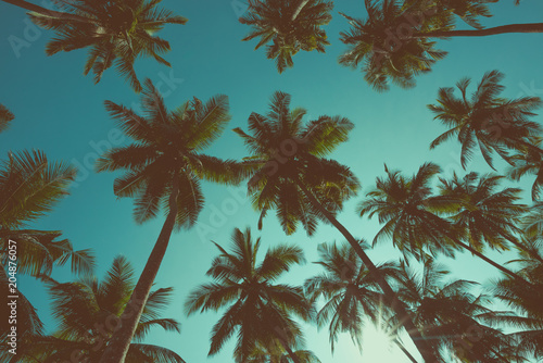 In de dag Asia land Vintage toned palm trees silhouettes
