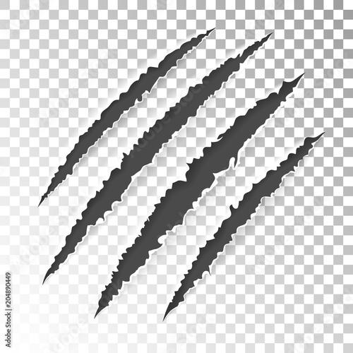 Fotografie, Obraz  Scratch Claws of Animal
