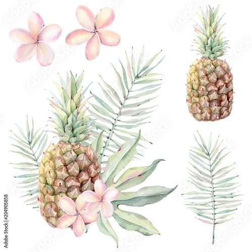 zestaw-tropikalnych-owocow-i-kwiatow