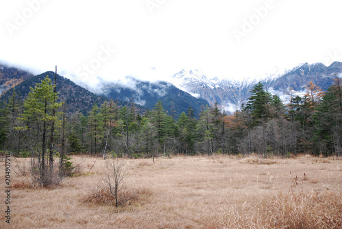 Foto op Canvas Zalm Kamikochi(Tashiro wet-land) panorama view in late autumn ~ early winter / 晩秋から初冬の上高地 - 田代湿原