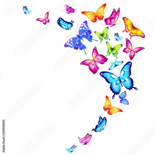 piękne kolorowe motyle, zestaw, odizolowane na białym