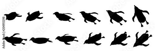 Photo  ペンギン シルエット 泳ぐ 水中