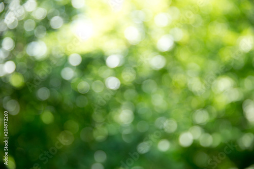obraz lub plakat Green bokeh background and sunlight