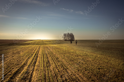 Poster Chasse People going into the distance through rural field in forward direction during hunting season sunrise sky horizon countryside landscape